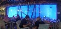 cairns-aquarium-3
